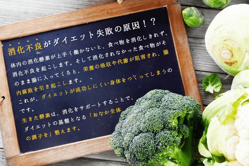 消化不良がダイエット失敗の原因!?