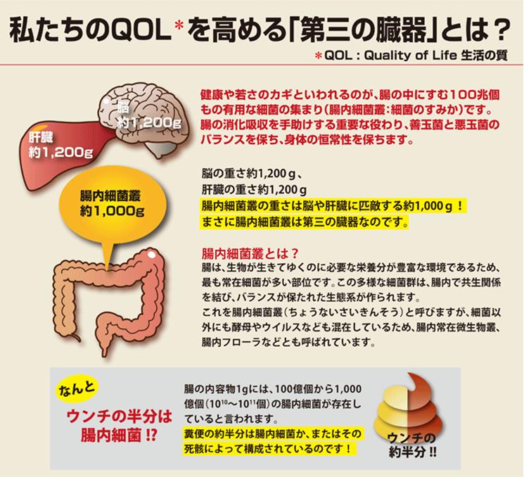 ROTTS-1 乳酸菌9000 (2.5g×60包)