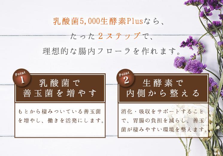 product_o_14-1